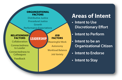 seven factors differentiate organization leadership The mckinsey 7-s framework  to improve performance in your organization the seven elements the mckinsey 7-s model involves seven interdependent factors which are.
